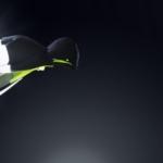 Campera Nike Shield Flash - Hombre